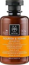 Parfémy, Parfumerie, kosmetika Revitalizační výživný šampon s olivovým olejem a medem - Apivita Nourish And Repair Shampoo With Olive And Honey