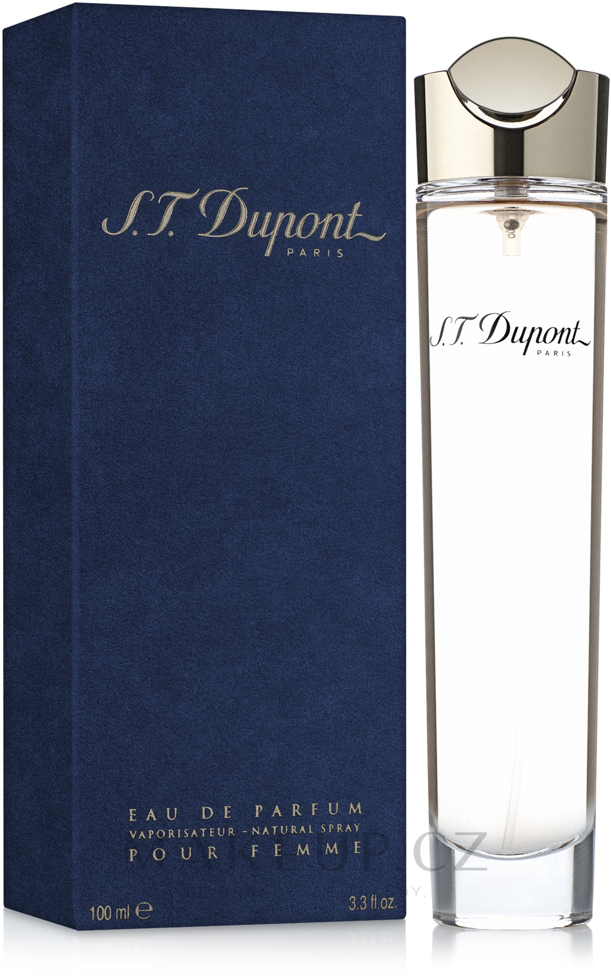 Dupont pour femme - Parfémová voda — foto 100 ml