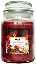 Parfémy, Parfumerie, kosmetika Vonná svíčka Záře u krbu - Airpure Jar Scented Candle Fireside Glow