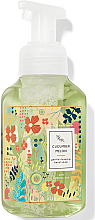Parfémy, Parfumerie, kosmetika Pěnivé mýdlo na ruce Cucumber Melon - Bath and Body Works Cucumber Melon Gentle Foaming Hand Soap