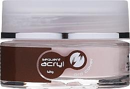Parfémy, Parfumerie, kosmetika Akryl na nehty, 12 g - Silcare Sequent Acryl