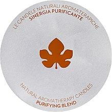 Parfémy, Parfumerie, kosmetika Aromatická svíčka - Biofficina Toscana Relaxing Blend Candle