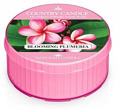 Parfémy, Parfumerie, kosmetika Vonná svíčka - Kringle Candle Blooming Plumeria