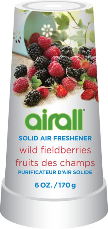 Tuhý osvěžovač vzduchu lesní plody - Airall Air Freshener Solid Wild Berries