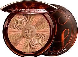 Parfémy, Parfumerie, kosmetika Pudr na obličej - Guerlain Terracotta Light Vitamin-Radiance Powder