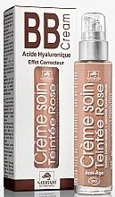 Parfémy, Parfumerie, kosmetika Hydratační tónovací BB krém - Naturado En Provence Bio BB Cream
