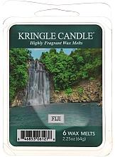 Parfémy, Parfumerie, kosmetika Vosk do aromalampy - Country Candle Fiji Wax Melts