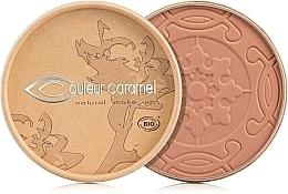 Parfémy, Parfumerie, kosmetika Bronzující pudr Terra karamel - Couleur Caramel Cooked Powder