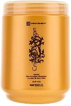 Parfémy, Parfumerie, kosmetika Maska pro hlubokou obnovu vlasů s arganovým olejem a aloe - Brelil Bio Traitement Cristalli d'Argan Mask Deep Nutrition