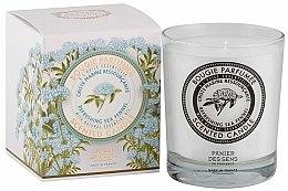 Parfémy, Parfumerie, kosmetika Panier Des Sens Sea Fennel - Aromatická svíčka