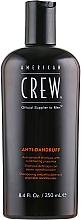 Parfémy, Parfumerie, kosmetika Vyvažovací šampon proti lupům na mastnou pokožku hlavy - American Crew Anti Dandruff+Sebum Control Shampoo