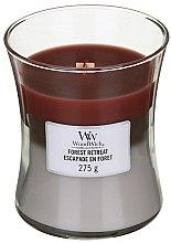 Parfémy, Parfumerie, kosmetika Vonná svíčka ve sklenici - WoodWick Hourglass Trilogy Candle Forest Retreat