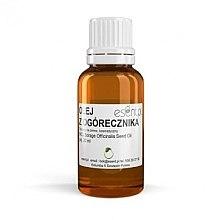 Parfémy, Parfumerie, kosmetika Okurkový olej - Esent