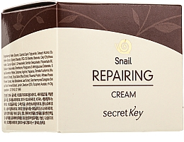 Parfémy, Parfumerie, kosmetika Krém na obličej - Secret Key Snail + EGF Repairing Cream