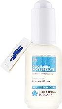 Parfémy, Parfumerie, kosmetika Olej na bradu - Biofficina Toscana Spicy Beard Oil