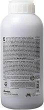 Šampon vyhlazující kudrlinky - Davines Shampoo Lisciante Addolcente — foto N2
