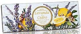 Parfémy, Parfumerie, kosmetika Sada přírodního mýdla Levandule a cedr - Saponificio Artigianale Fiorentino Capri Lavender & Cedar (3 x 100g)