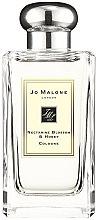 Parfémy, Parfumerie, kosmetika Jo Malone Nectarine Blossom and Honey - Kolínská voda (tester s víčkem)