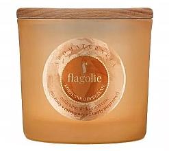 Parfémy, Parfumerie, kosmetika Vonná svíčka v sklenici Uvloňující - Flagolie Fragranced Candle Relaxing