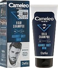 Parfémy, Parfumerie, kosmetika Šampon pro muže redukující šedivé vlasy - Delia Cameleo Men Against Grey Hair Shampoo