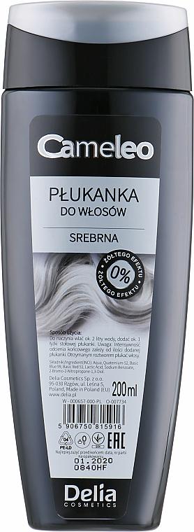 Stříbrný přeliv na vlasy s jasmínovou vodou - Delia Cosmetics Cameleo — foto N2