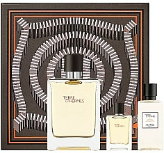 Parfémy, Parfumerie, kosmetika Hermes Terre D'Hermes - Sada (edt/100 ml + ash/40 ml + edt/5 ml)