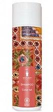 Parfémy, Parfumerie, kosmetika Šampon na barevné vlasy - Bioturm Shampoo Color Nr.108
