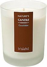 """Parfémy, Parfumerie, kosmetika Parafínová svíčka """"Cocoloba"""" - Ligne St Barth Body"""