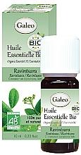 Parfémy, Parfumerie, kosmetika Organický esenciální olej Kafrovník lékařský - Galeo Organic Essential Oil Ravintsara