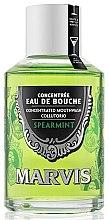 Parfémy, Parfumerie, kosmetika Ustní voda Máta - Marvis Concentrate Spreamint Mouthwash