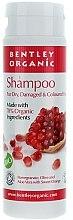Parfémy, Parfumerie, kosmetika Šampon pro suché a poškozené vlasy - Bentley Organic Shampoo For Dry & Damaged Hair
