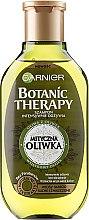 Parfémy, Parfumerie, kosmetika Šampon na vlasy - Garnier Botanic Therapy Olive