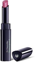 Parfémy, Parfumerie, kosmetika Hydratační rtěnka - Dr.Hauschka Sheer Lipstick