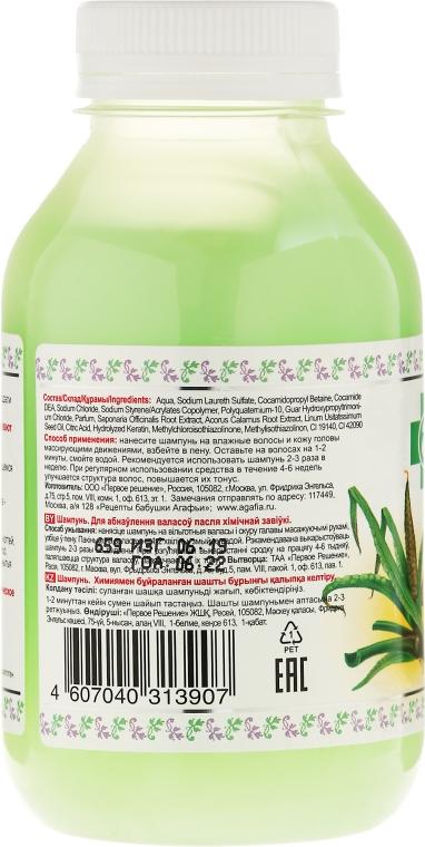 Šampon proti vypadávání vlasů - Recepty babičky Agafyy Lékárnička Agafií  — foto N2