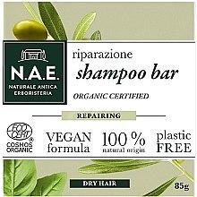 Parfémy, Parfumerie, kosmetika Tuhý šampon pro suché vlasy - N.A.E. Repairing Shampoo Bar