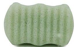 Parfémy, Parfumerie, kosmetika Houbička na obličej a tělo Zelený čaj - Bebevisa Konjac Sponge
