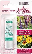 Parfémy, Parfumerie, kosmetika Balzám na rty Luční trávy, šalvěj-měsíček - Luxvisage