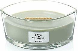 Parfémy, Parfumerie, kosmetika Vonná svíčka ve sklenici - WoodWick Hearthwick Flame Ellipse Candle Applewood