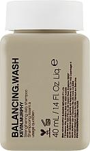 Parfémy, Parfumerie, kosmetika Zpevňující šampon na každodenní použití pro barvené vlasy - Kevin.Murphy Balancing.Wash (mini)