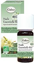 Parfémy, Parfumerie, kosmetika Organický esenciální olej Eukalyptus globulus - Galeo Organic Essential Oil Eucalyptus Globulus