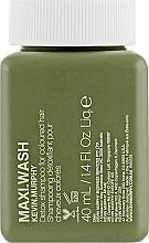 Parfémy, Parfumerie, kosmetika Detoxikační šampon pro barvené vlasy - Kevin.Murphy Maxi.Wash Shampoo (mini)