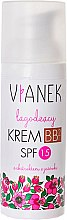 Parfémy, Parfumerie, kosmetika Zklidňující BB-krém - Vianek BB Cream SPF15