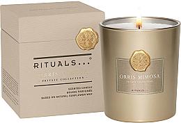 Parfémy, Parfumerie, kosmetika Vonná svíčka - Rituals Private Collection Orris Mimosa Scented