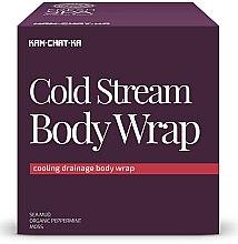 Parfémy, Parfumerie, kosmetika Chladicí lymfatický drenážní zábal - Natura Siberica Fresh Spa Kam-Chat-Ka Cold Stream Body Wrap