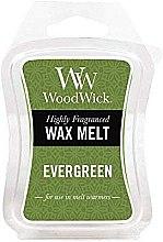 Parfémy, Parfumerie, kosmetika Aromatický vosk - WoodWick Wax Melt Evergreen