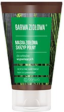 Parfémy, Parfumerie, kosmetika Bylinková maska na vlasy s extraktem z přesličky - Barwa Color Herbal Mask
