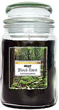 Parfémy, Parfumerie, kosmetika Vonná svíčka Černý les - Airpure Jar Scented Candle Black Forest