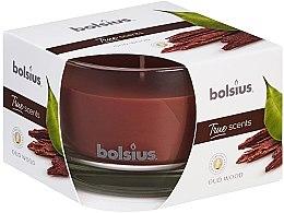 """Parfémy, Parfumerie, kosmetika Vonná svíčka ve sklenici """"Agarový strom"""", 63/90 mm - Bolsius True Scents Candle"""