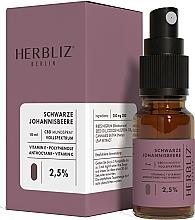 Parfémy, Parfumerie, kosmetika Ustní sprej na bázi oleje Černý rybíz 2.5% - Herbliz CBD Oil Mouth Spray 2,5%