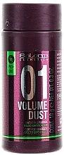Parfémy, Parfumerie, kosmetika Pudr pro dodání vlasům objemu a hustoty - Salerm Pro Line Volume Dust 01 Mattifying Powder